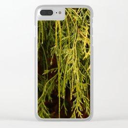 Carolina III Clear iPhone Case