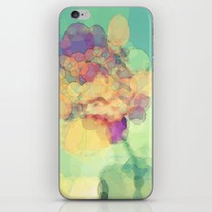 A Rose to Remember iPhone & iPod Skin