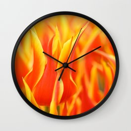 Yellow-red tulips Wall Clock