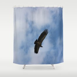 Vulture flight Shower Curtain