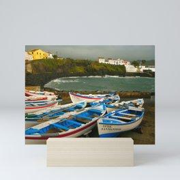 Portuguese harbour Mini Art Print