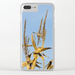 autumn corn field Clear iPhone Case