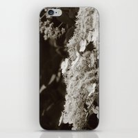 climbing iPhone & iPod Skins featuring Climbing hydrangea by Christine baessler