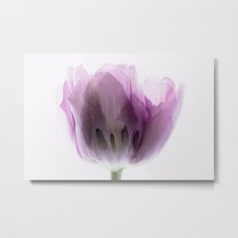 Inside Out Tulip Metal Print