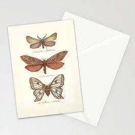 Forester Moth, Venus Moth & Spanish Moon Moth Stationery Cards