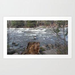 River Banks Art Print