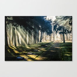 Sun rays of peace Canvas Print