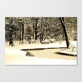 Winter scenery in a park Canvas Print