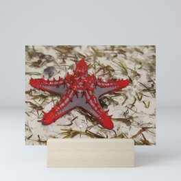 Ocean Red Starfish Illustration Mini Art Print