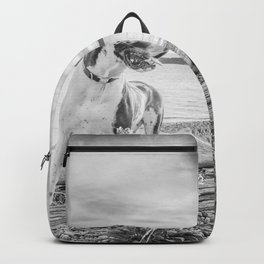 Harlequin Beach Sunset Backpack