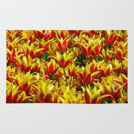 red and yellow tulips Rug