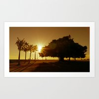 City Sahara Art Print