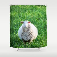 sheep Shower Curtains featuring Sheep by L'Accent Nou by Anastasia Egorova