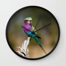 Lilac-Breasted Roller Perched on a Branch Wall Clock