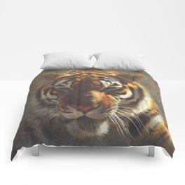 Jacob Comforters