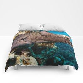 Moray Eel Cat Comforters