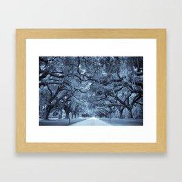 Plantation Avenue Framed Art Print