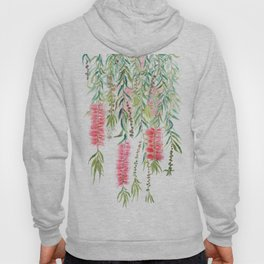 bottle brush tree flower Hoody