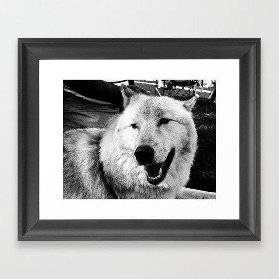 Wolf Dog Framed Art Print