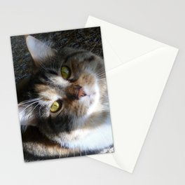 You Were Saying? Stationery Cards
