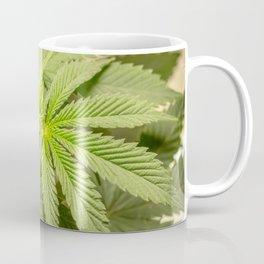 Top of the Clone Coffee Mug