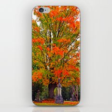 Northwest Autumn iPhone & iPod Skin