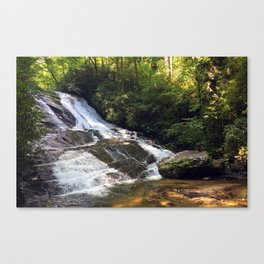 Cathy Creek Falls Canvas Print