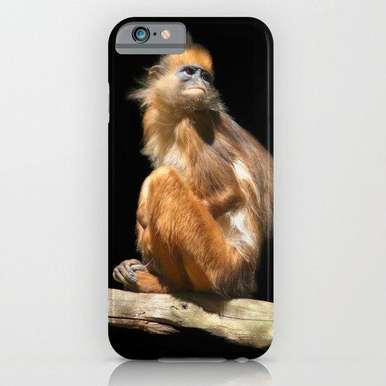 Banded Leaf Monkey Howletts iPhone & iPod Case