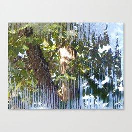 My window view Canvas Print