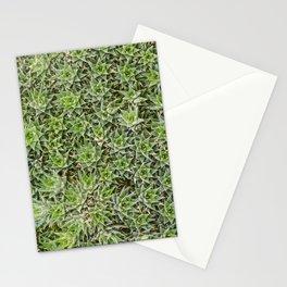 Microcosmos 02 Stationery Cards
