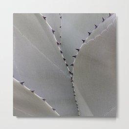 Agave Cactus I Metal Print