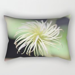 When the flower is gone -- clematis seed macro art print  Rectangular Pillow