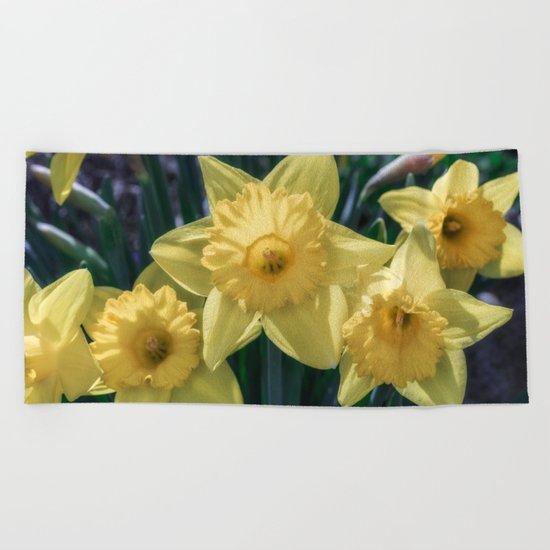 Spring time Daffodils Beach Towel