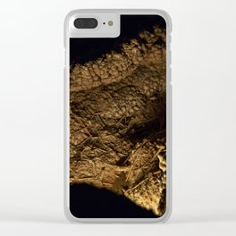 Carlsbad Caverns XII Clear iPhone Case