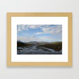 A Study in Denali Framed Art Print