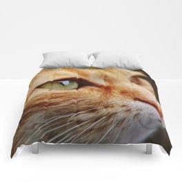 cat face 4 Comforters