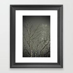 Tree #2 Framed Art Print