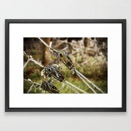 Oregon (frozen) Framed Art Print