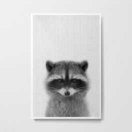 raccoon headshot Metal Print