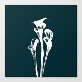 Calla Lily - Navy Canvas Print