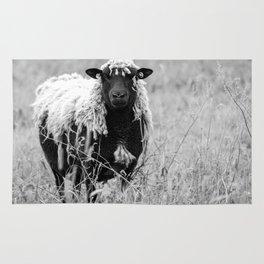 Sheep with sharp eyes Rug