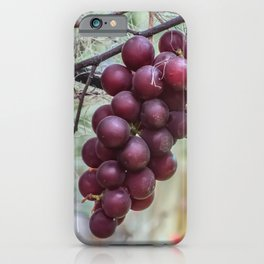 Maturity iPhone Case