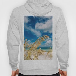 Gulf of Mexico Hoody