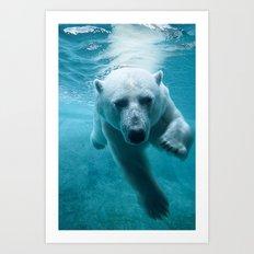 Polar Bear Swimming Art Print