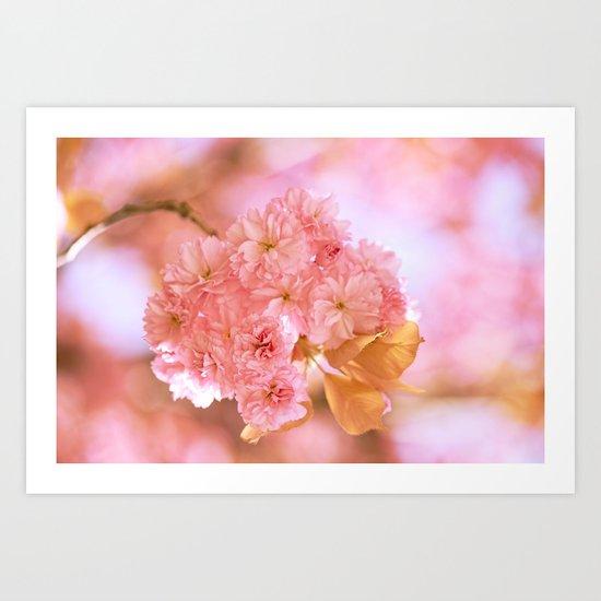 Sakura - Cherryblossom - Cherry blossom - Pink flowers 2 Art Print