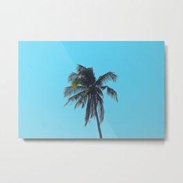 Palm in Blue Metal Print