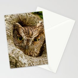 Phenomenal Adorable Night Active Bird Looking Out Of Tree House Zoom UHD Stationery Cards