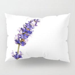 Mediterranean Lavender on White Pillow Sham