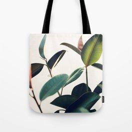Ficus Elastica #8 Tote Bag