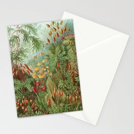 Scientific Illustration of Moss in the Forest -  Haeckel, 1904 Stationery Cards